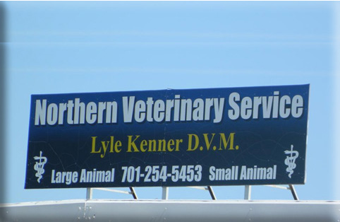 Northern Veterinary Services